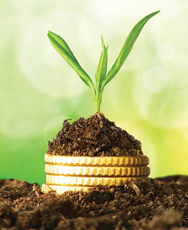 impact investing money and plant 2